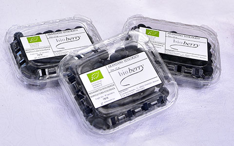 Blueberries in tubs 125g